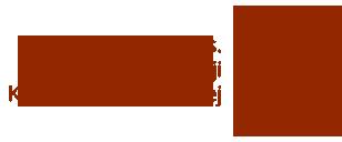 Sekcja ds. Nowej Ewangelizacji -